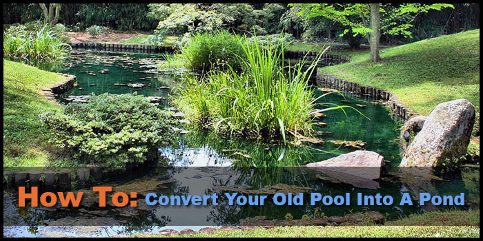 How to convert your old pool into a pond for Repurpose inground swimming pool